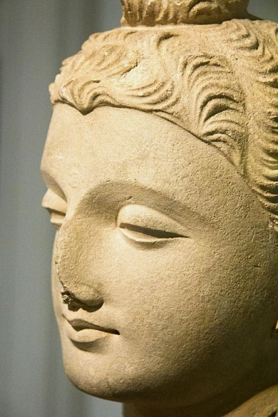 Soubor:Head of Buddha Shakyamuni Gandhara 3rd-4th c AD, stucco, Prague Kinsky, NG Vp 782, 142190.jpg